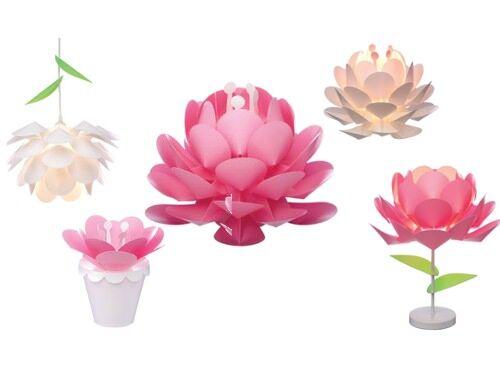 Missi Missi Lotus Lights