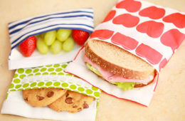How to pack a nude food lunch for school | Mum's Grapevine