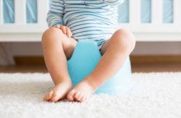 Toilet training tips and essentials | Mum's Grapevine