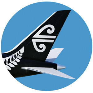 air new zealand tail wing