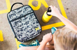 The 15 best insulated lunch boxes and bags to keep food fresh   Mum's Grapevine