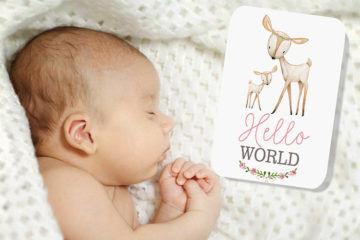 Best Baby Milestone Cards: Groovy Goose
